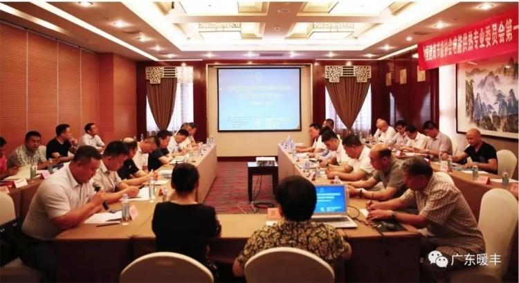 中国建筑节能协会电能供热专业委员会