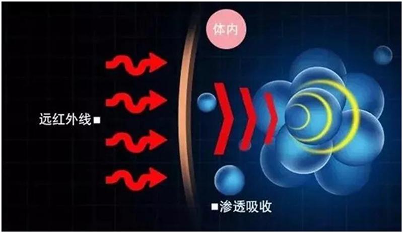 远红外线与人体水分共振示意图